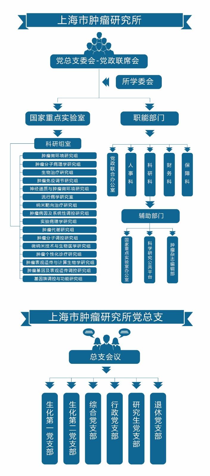 组织架构-01.jpg